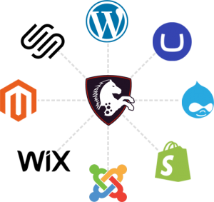 MaxAccess supports most any website platform with a simple install of a JavaScript tag